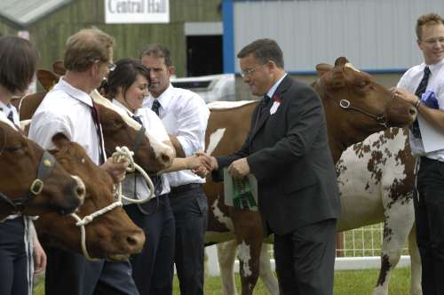 Royal Welsh Show Copyright Margaret McGlone