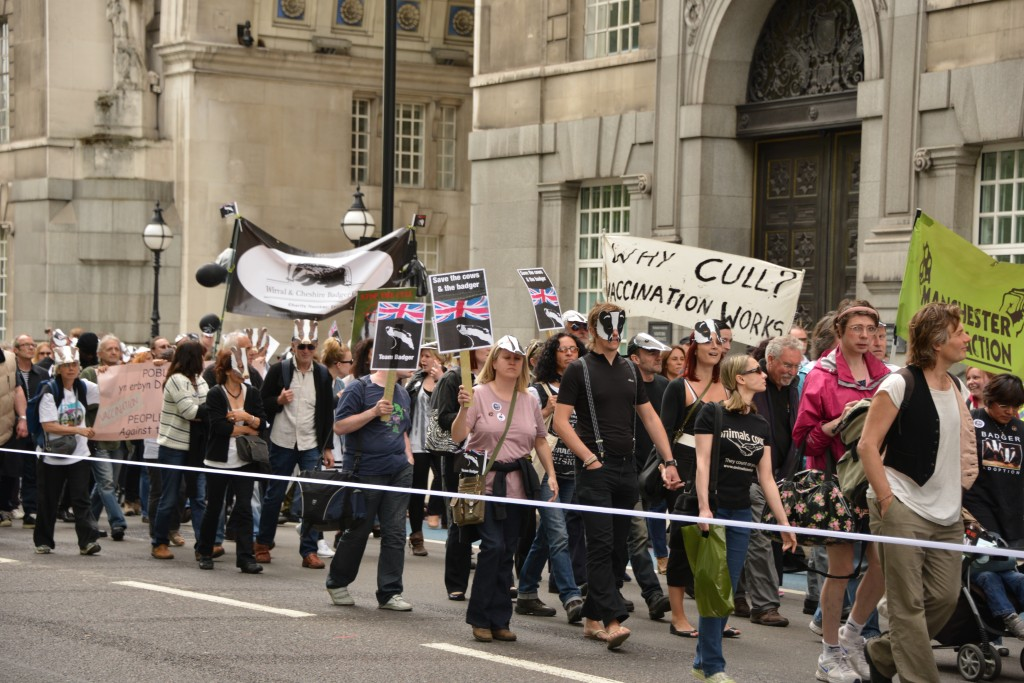 London against the cull Westminster copyright Gordon McGlone PhotonNatura